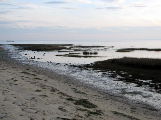 plage des Quinconces