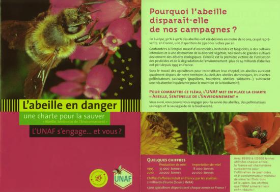 abeilles-en-danger.png