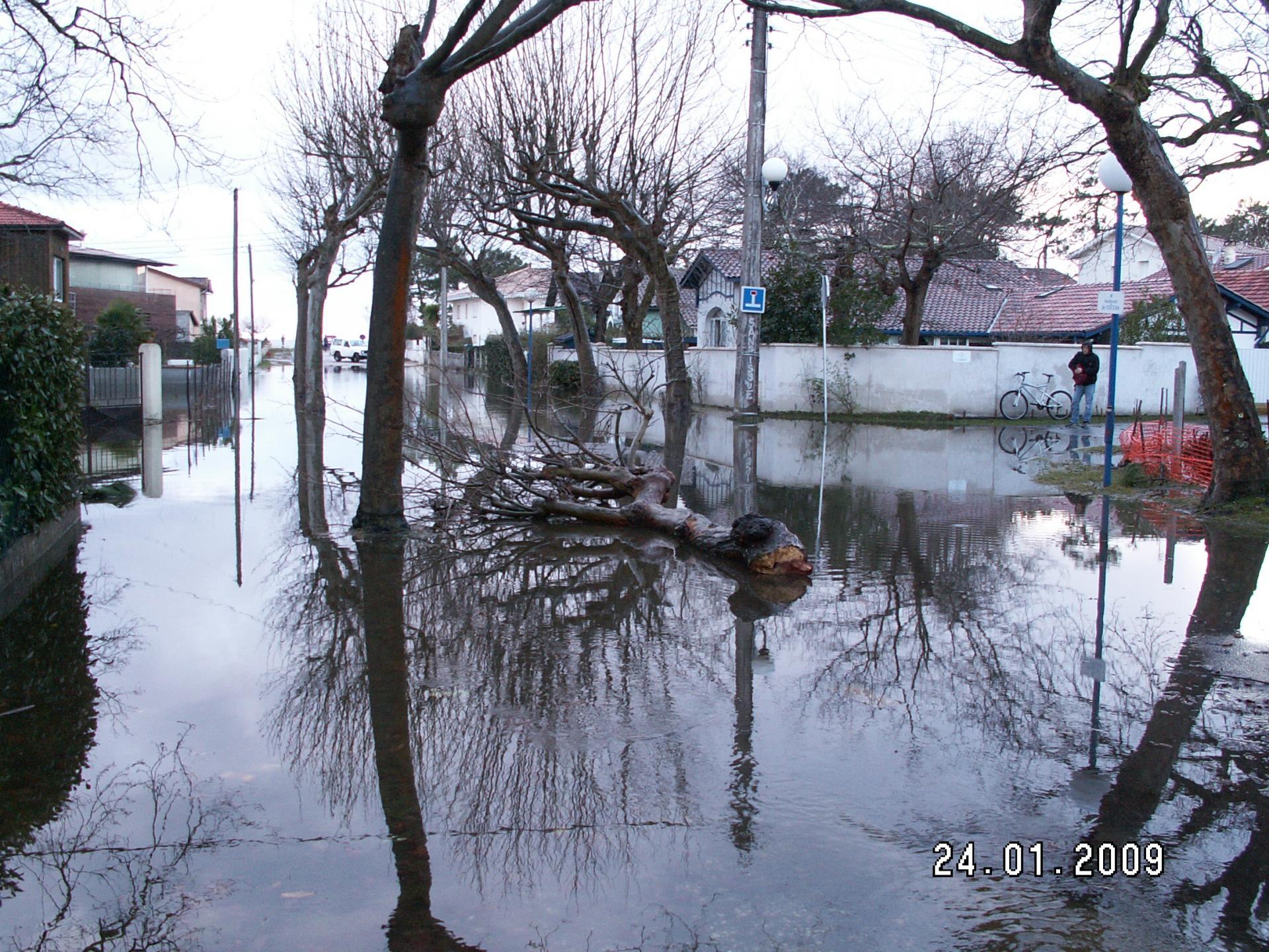 Ecocitoyens Du Bassin D Arcachon
